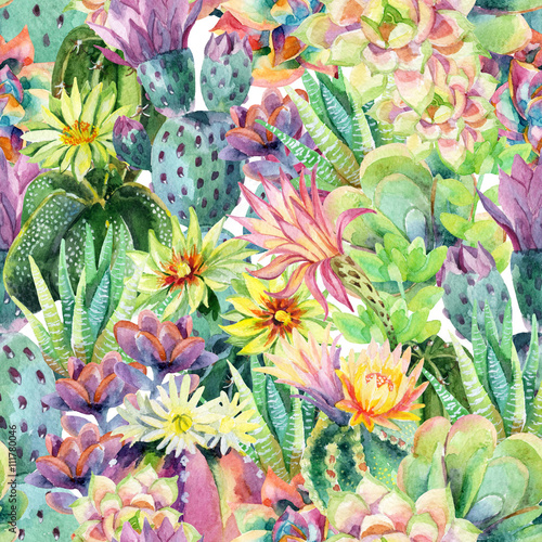 Printed kitchen splashbacks Watercolor Nature Watercolor blooming cactus background