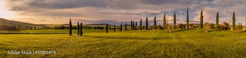 Panorama of Tuscan landscape - 111815479