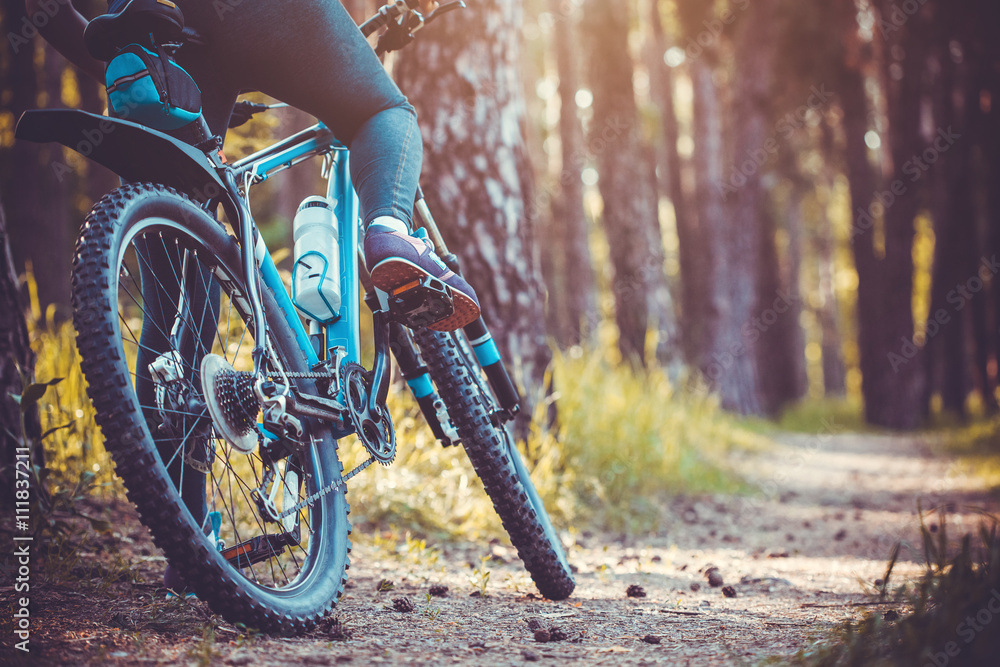 Fototapeta cyclist riding mountain bike in the forest