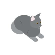 Grey Cat Icon, Isometric 3d Style