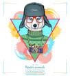 Portrait of fashion husky dog, hipster animals