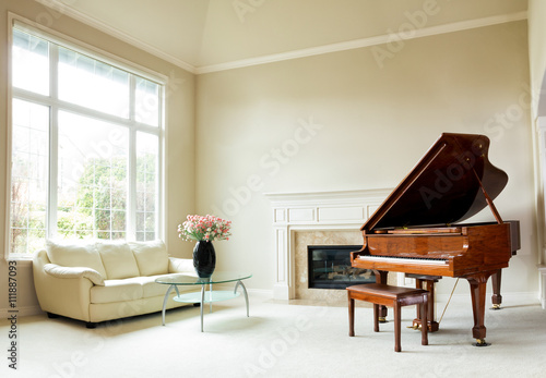 Fotografia  Bright daylight living room with grand piano