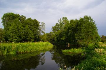 Fototapeta Rzeka i Jezioro Rzeka Grabia
