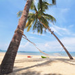Coconut palm trees with hammock and tropical beach background, happy summer holiday concept
