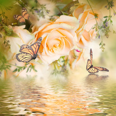 FototapetaBeautiful roses and butterfly, flower, floral background