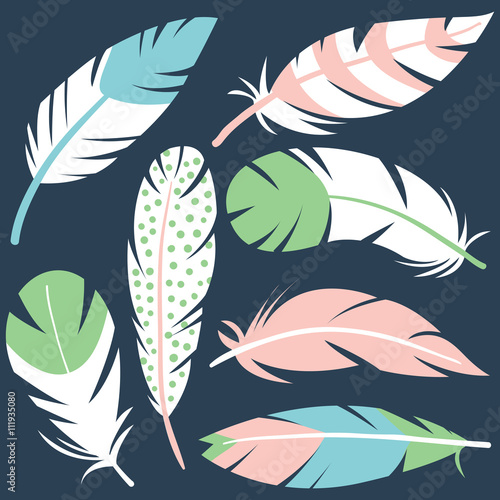 Decorative bird feathers collection