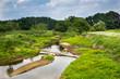 renaturierter Flusslauf