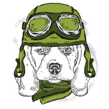 Cute Dog Wearing A Helmet . Biker . Vector .  Element For Printed Products Or Prints On Clothes And Accessories .