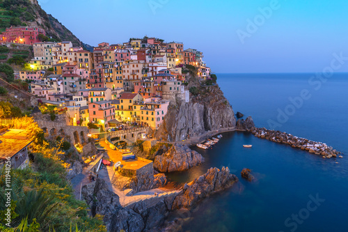 Manarola village at night, Cinque Terre, Italy Poster