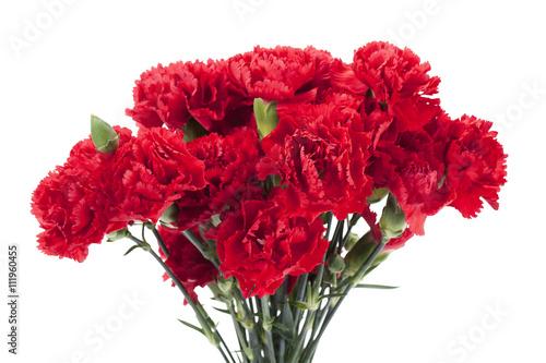 Photo  red peonies