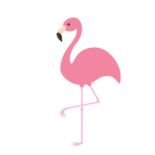 Pink Flamingo. Exotic Tropical Bird. Zoo Animal Collection. Cute Cartoon Character. Decoration Element. Flat Design. White Background. Isolated.