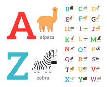 Animals Alphabet Or Zoo Alphabet Colored Icons. Vector Illustration