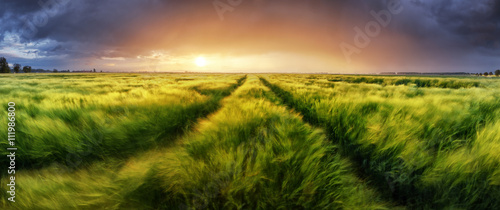 Storm and light on meadow, Panorama landscape