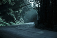 Dark Forest With Empty Road In...
