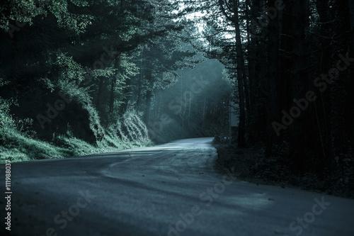 Cuadros en Lienzo Dark forest with empty road in receding light