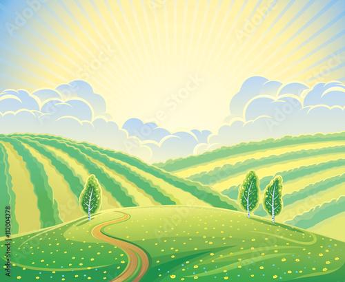 Fotobehang Zwavel geel Summer rural landscape with hills and road. Sunrise over the hills that morning.