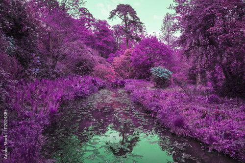 Tuinposter Aubergine Stunning infrared alternative color landscape image of trees ove