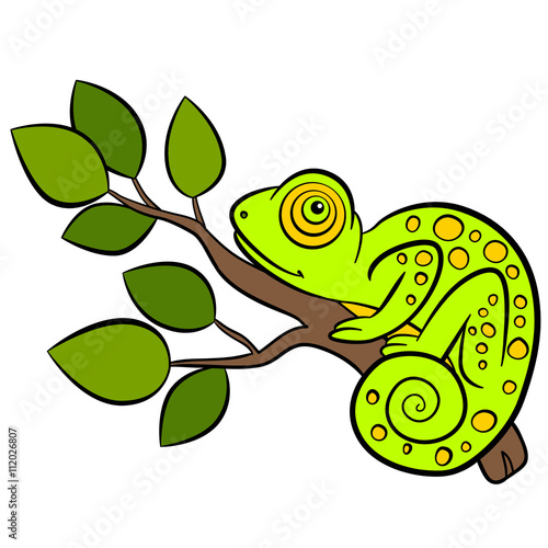 Cartoon animals for kids. Little cute green chameleon sits on the tree branch.