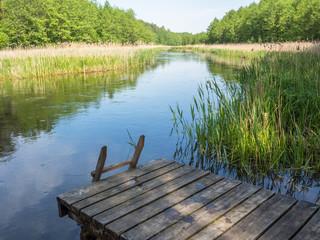 Fototapeta Rzeka i Jezioro Pomost nad rzeką Czarna Hańcza