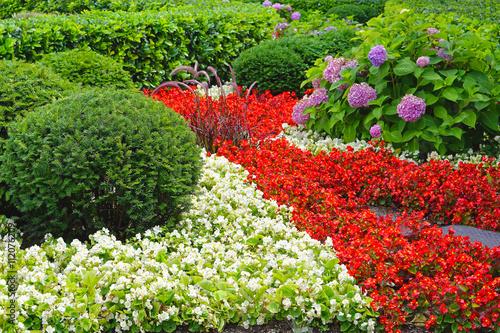 Deurstickers Groene Cultivated garden