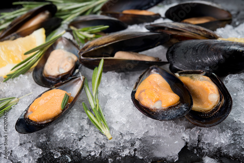 Fotografia  Fresh crude seafood. Mussels in a cockleshell