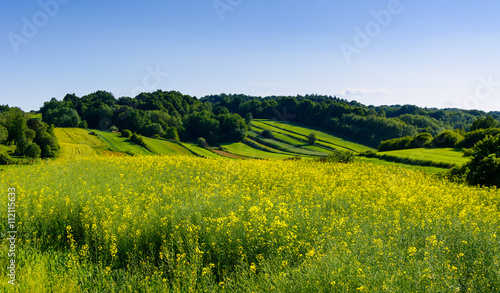 Poster de jardin Colline Beauty green hills in Poland