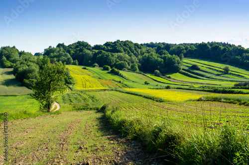 Foto auf Gartenposter Hugel Beauty green hills in Poland