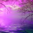 Leinwanddruck Bild - illustration of beautiful colorful sundown landscape