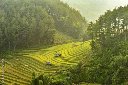 Fotobehang Rijstvelden Mu Cang Chai is a rural district of Yen Bai Province, in the Northeast region of Vietnam. The most of area is rice terrace.The paddy turns golden in september of each year.