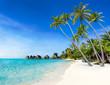 Traumstrand auf einer Insel in den Tropen