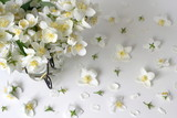 Floral background with white jasmine flowers. Decorative border or frame with bouquet of white mock-orange jasmine - Philadelphus flowers.