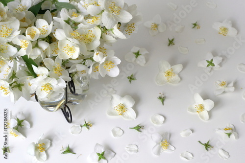 Photo Floral background with white jasmine flowers
