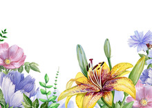 Watercolor Floral Image With Lily, Violet And Chicory Flowers