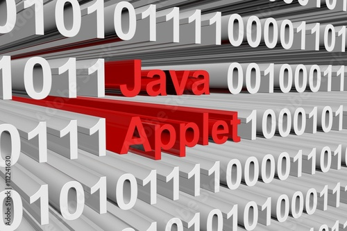the java applet in the form of binary code, 3D illustration Canvas Print