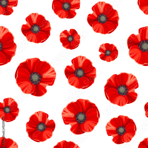 Fototapeta Vector seamless pattern with red poppies on a white background. obraz