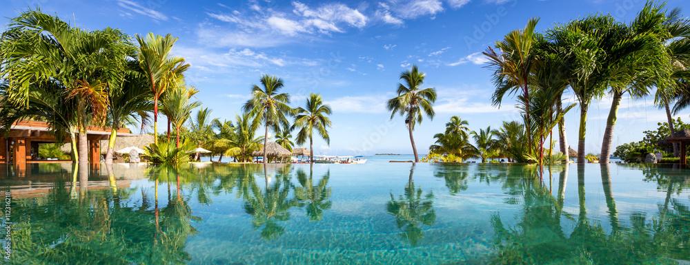 Fototapeta Pool Panorama mit Palmen