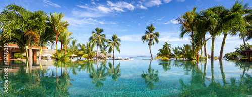 Pool Panorama mit Palmen Poster Mural XXL
