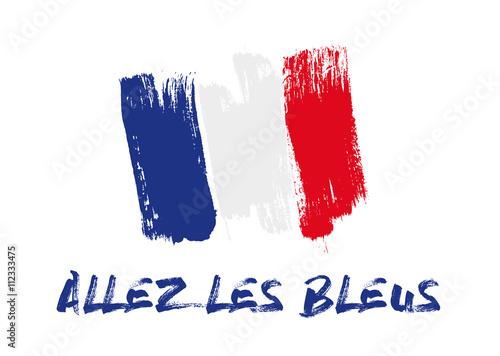 Fotografie, Obraz  Football - Allez les bleus