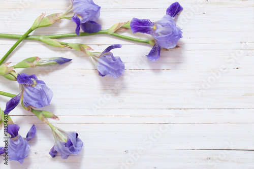 Poster Iris iris on white wooden background