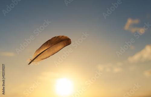 piorko-latajace-w-powietrzu