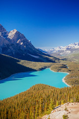 Peyto Lake, Banff National Park, Rocky Mountains, Alberta, Canad