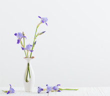 Bouquet Of Spring Purple Iris In A Vase On White
