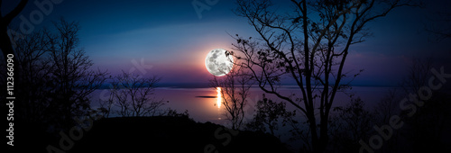 Photo Stands Night Panorama. Silhouettes of woods and beautiful moonrise.