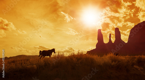 Papiers peints Cactus silhouette of horses grazing in monument valley