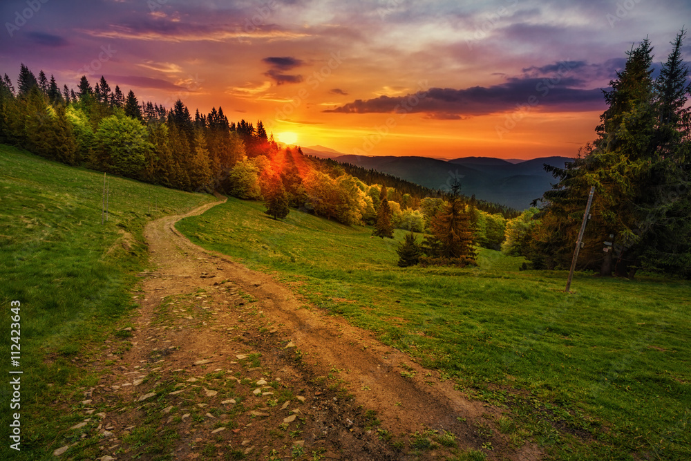 Path in polish mountains