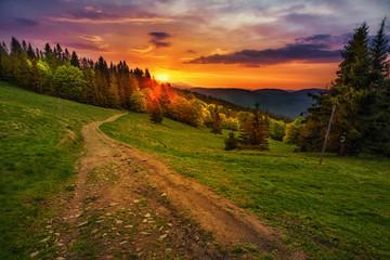 Fototapeta na wymiar Path in polish mountains