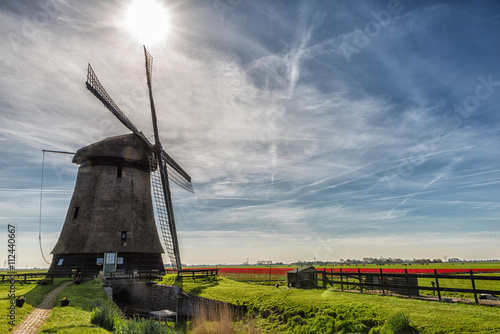 Aluminium Prints Mills windmills and tulips