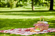 canvas print picture - Delicious picnic spread with fresh food