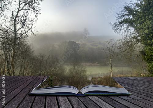 Keuken foto achterwand Khaki Moody dramatic foggy forest landscape Spring Autumn Fall