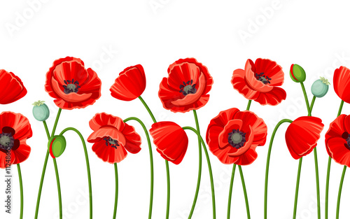 Obraz na plátně Vector horizontal seamless background with red poppies on a white background
